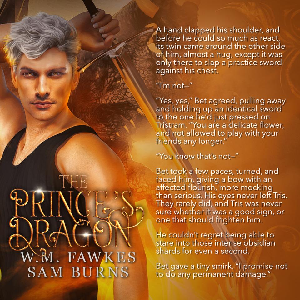 The Prince's Dragon Promo 5