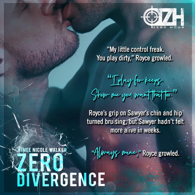 Zero Divergence teaser 4